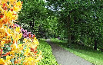 Knoops Park Bremen